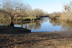 fleuve-la-leyre